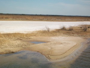 salt plains