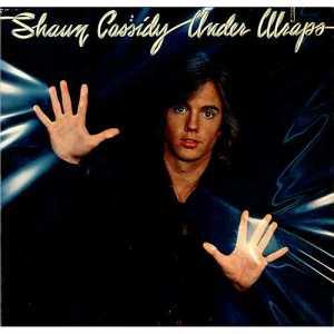 Shaun Cassidy Under Wraps