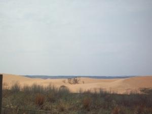 Little Sarah sand dunes